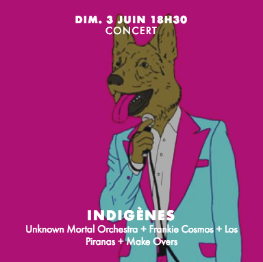 festival indigenes 2018
